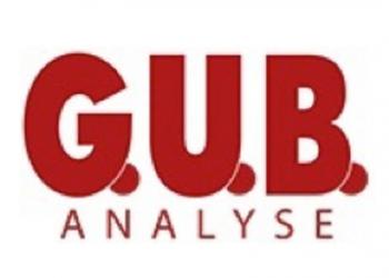 GUB Analyse